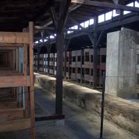 Campo di Auschwitz II-Birkenau