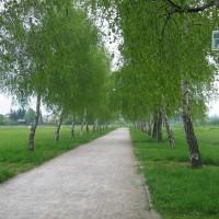 Sentiero delle rimembranze (POT), Ljubljana